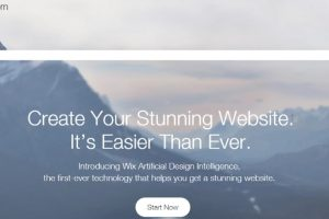Wix ADI Home Page